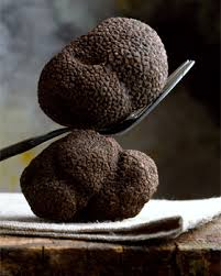 where can you buy truffles buy truffles online truffle harvest australia