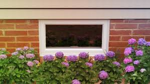 replacement windows by window world