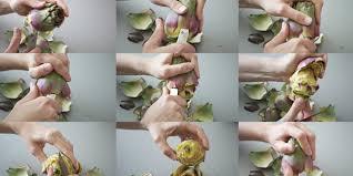 cuisiner les artichauts violets comment éplucher un artichauts poivrade quileutcuit recettes