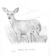 disney coloring pages deer disney coloring pages