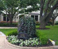 texas native plants landscaping flowering trees in texas an overview u2013 lee ann torrans gardening
