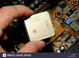hand putting cpu processor advanced micro devices amd opteron chip