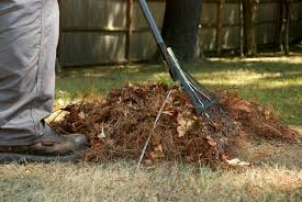 Fall Cleanup Landscaping by Spring And Fall Cleanup Jmf Landscaping Weymouth