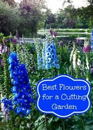 Pictures Of Gardens And Flowers Best 25 Cut Flower Garden Ideas On Pinterest Spring Plants