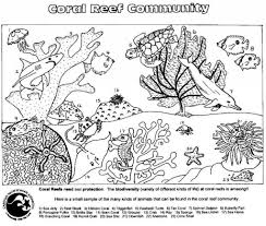 food chain coloring pages color brain regarding food chain