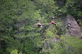 Florida nature activities images Amazing spring activities you can do in ocala marion county fl jpg