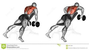 exercising incline bench two arm dumbbell row stock illustration