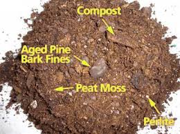 Soil Mix For Container Gardening - 4 key ingredients to potting mixes and container gardening