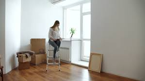 Chair Boxes Moving Cute During Moving Home Stock Footage 24327854