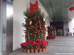 New Year Tree Decoration by Chinese New Year Traditions Oh The Things We Have Learned Since