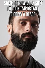 Funny Beard Memes - cool beard meme beard pinterest testing testing