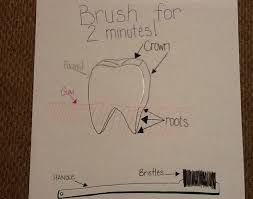 teeth and dental health scholastic