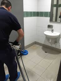 nepean complete cleaning services