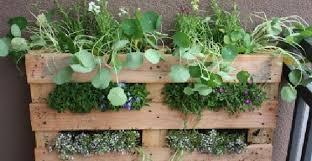 come realizzare un giardino pensile orti urbani come costruire un giardino verticale fai da te con il