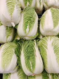 cabbage china napa cabbage
