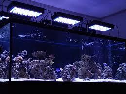 Sb Light Reviews Reef2reef Saltwater And Reef Aquarium Forum