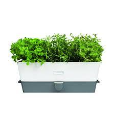 herb self watering triple potted fresh herb keeper cole u0026 mason uk