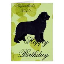 happy birthday greeting cards zazzle co uk