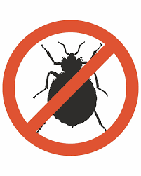 Bug Na Rug 6 Ways To Protect Your Home From Bed Bugs News Wilmington Star