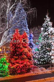 leavenworth red christmas tree high res jpg chelan county commons