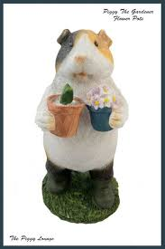 11 best guinea pig themed gifts images on guinea pigs