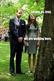 Royal Family Memes - a funny royal family pictures trees copy
