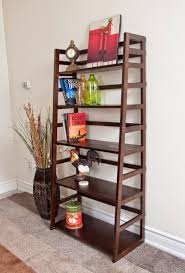 Ladder Bookcase by Ladder Shelf