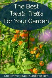 Trellis Vegetable Garden by 10139 Best Sustainable Gardening And Methods Images On Pinterest