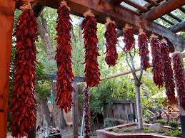 kitchen chili pepper wall art chili pepper christmas ristras new mexican red chiles