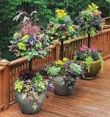 Potted Garden Ideas Container Garden Ideas 13 Container Gardening Ideas Potted Plant