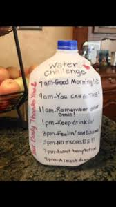 How Does Water Challenge Work 30 Day Water Challenge Are You Ready For It Camdenliving