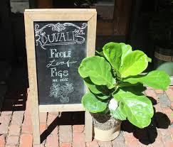 figs delivery rouvalis flowers offering luxury floral delivery in boston for