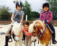 Make Up Classes In Miami Horseback Riding Lessons Miami Equestrian Club