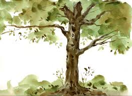 art in a busy world watercolor sketches and video demos