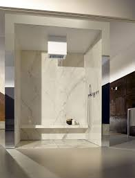 ceiling mounted shower head rectangular rain elemental spa