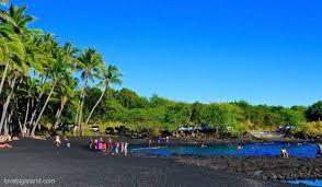 Black Sand Beach Big Island   punalu u black sand beach big island turtles swimming and snorkeling