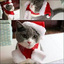 cat christmas pet leso cat christmas hat with muffler puppy dog santa