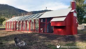 Building Backyard Chicken Coop Where In My Backyard Should I Put My Chicken Coop