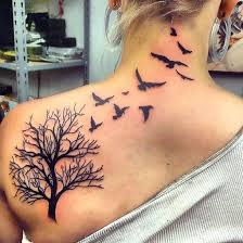 best 25 tree with birds ideas on