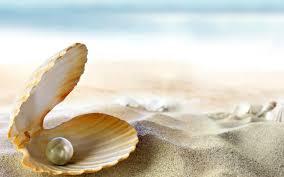 beaches ocean pearl perl tropical sea sun seashell sand beach