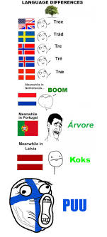 Finnish Language Meme - finnish has won on this one