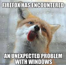 Meme Fox - firefox imgflip