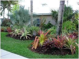 Home Improvement Backyard Landscaping Ideas Tropical Back Yards Tropical Backyards Creations Back Yard Trees