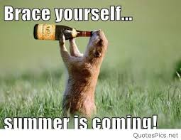 Summer Is Coming Meme - cute funny summer is coming pics images 2016