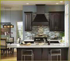 Kitchen Paint Colors With Oak Cabinets Kitchen Stunning Kitchen Colors With Black Cabinets Light Wood