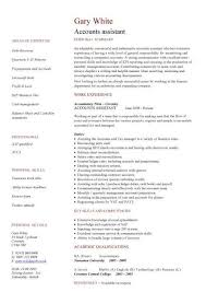 sle resume format for accounting assistant job summary accounts assistant cv cv pinterest cv template template and