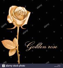 golden roses golden vector stock vector illustration vector image