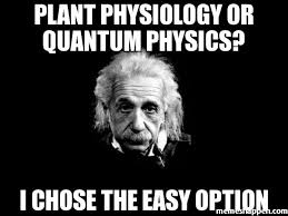 Easy Memes - plant physiology or quantum physics i chose the easy option meme