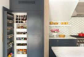 Pantry Cabinet Door Blue Pantry Cabinet Door Spice Racks Contemporary Kitchen