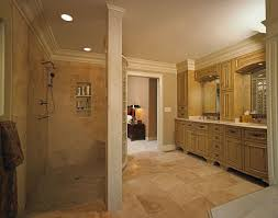 Award Winning Bathroom Designs Images by Shower Master Bathroom Plans Walk In Shower Awesome Walk In